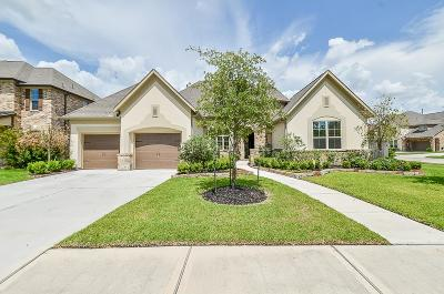 Cypress Single Family Home For Sale: 9702 Reston River Lane