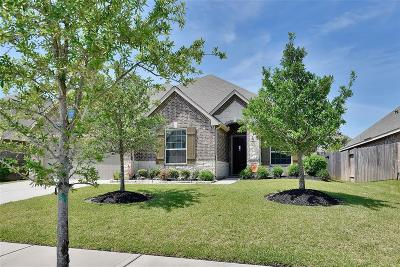 Tomball Single Family Home For Sale: 12911 Chatfield Manor Lane