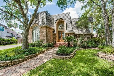 Houston Single Family Home For Sale: 1331 W Vistawood Court