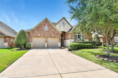 Pearland Single Family Home For Sale: 13616 Orchard Wind Lane