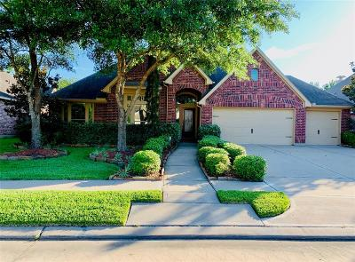 Pearland Single Family Home For Sale: 2806 Green Mountain Drive