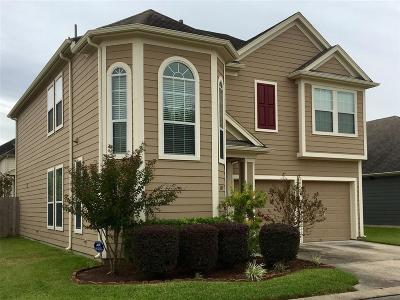 Houston Single Family Home For Sale: 6107 Tenton Park Lane Lane