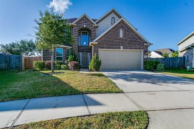 League City Single Family Home For Sale: 6153 Flint Court