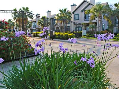Kemah Condo/Townhouse For Sale: 472 Mariners Drive