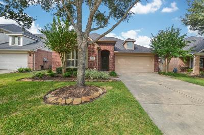 Katy Single Family Home For Sale: 2538 Llano Springs Drive
