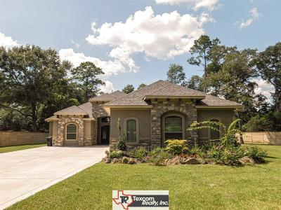 Porter Single Family Home For Sale: 24922 Plantation Estates Avenue