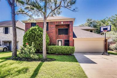 Pearland Single Family Home For Sale: 3905 Blue Heron Drive
