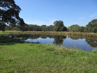 Garwood TX Farm & Ranch For Sale: $240,000