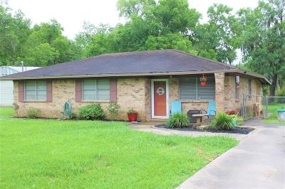 Brazoria Single Family Home For Sale: 2739 County Road 510y Road