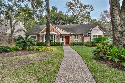 Houston Single Family Home For Sale: 722 Wax Myrtle Lane