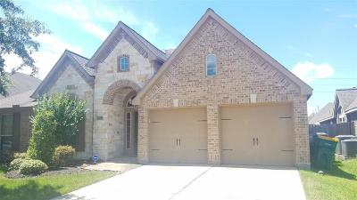 Pearland Single Family Home For Sale: 13512 Durango Pass Drive