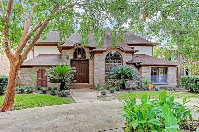 Houston Single Family Home For Sale: 12511 Barryknoll Lane