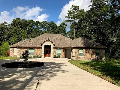 Single Family Home For Sale: 1027 Weisinger Drive