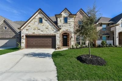 Spring Single Family Home For Sale: 4117 Ashwood Hollow Lane