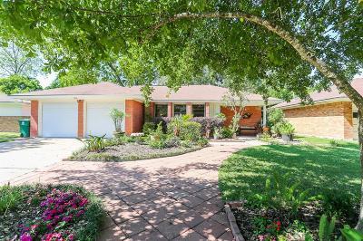 Houston Single Family Home For Sale: 12221 Palmbeach Street