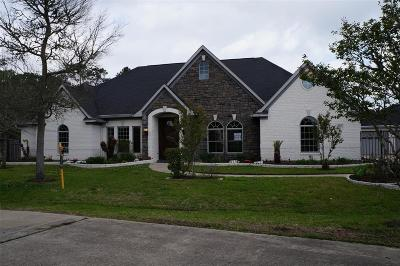 Friendswood Single Family Home For Sale: 904 Shady Bend Lane