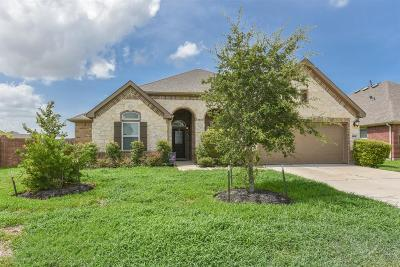 Pearland Single Family Home For Sale: 13934 Ginger Rose Court