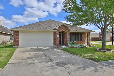 Houston Single Family Home For Sale: 12027 Parkers Hideaway Drive