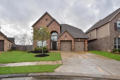 Pearland Single Family Home For Sale: 3726 Cibolo Court