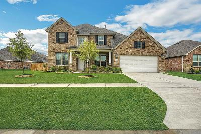 Tomball Single Family Home For Sale: 24623 Emerald Pool Falls Drive
