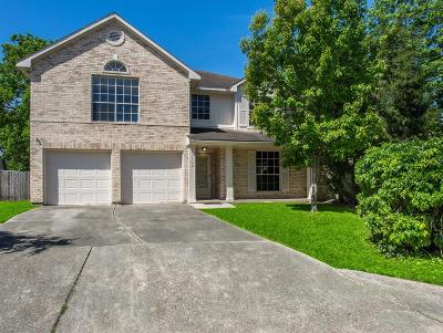Humble Single Family Home For Sale: 3802 Village Well Drive