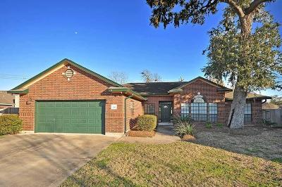 Lake Jackson Single Family Home For Sale: 56 Chicory Court