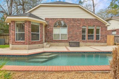 The Woodlands Single Family Home For Sale: 10 N Winterport Circle