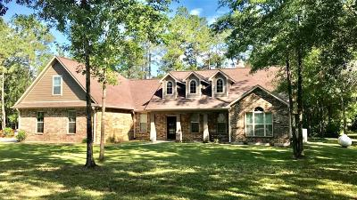 Dayton Single Family Home For Sale: 351 Private Road 6350