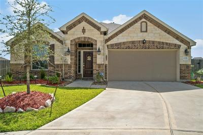 Tomball Single Family Home For Sale: 13031 Lily Crest Lane