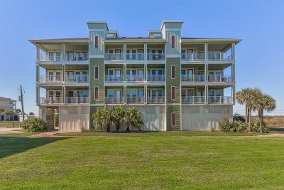 Galveston Condo/Townhouse For Sale: 4231 Pointe West Drive #103