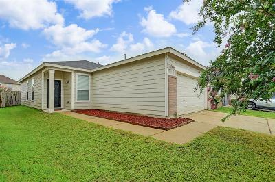 Houston Single Family Home For Sale: 2702 Skyview Cove Court