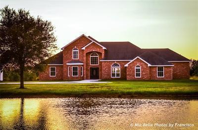 Angleton Single Family Home For Sale: 20012 Fm 523
