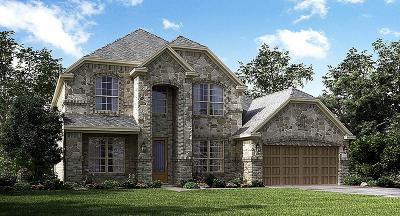 League City Single Family Home For Sale: 2611 Granite Shadow Lane