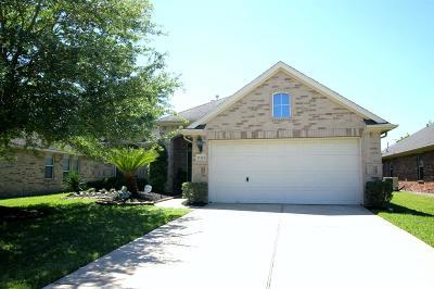 Houston Single Family Home For Sale: 11115 Lori Brook Lane