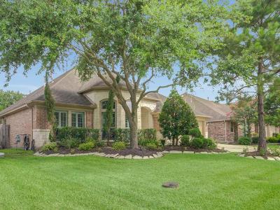 League City Single Family Home For Sale: 517 Stoneridge Terrace
