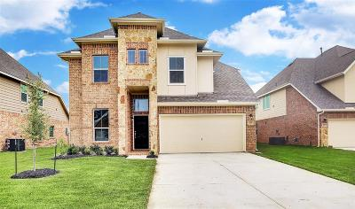 Baytown Single Family Home For Sale: 223 San Marcos Drive