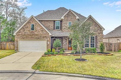 Spring Single Family Home For Sale: 25303 Shaded Springs Lane
