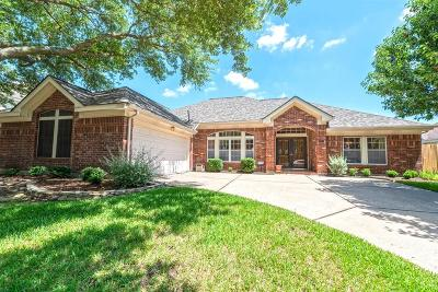 Houston Single Family Home For Sale: 14222 Highcroft Drive