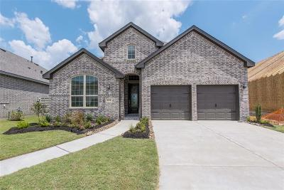 Manvel Single Family Home For Sale: 2215 Blackhawk Ridge