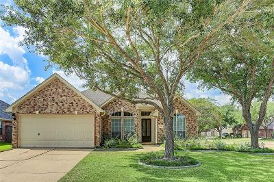 Sugar Land Single Family Home For Sale: 1715 Bluebeard Court