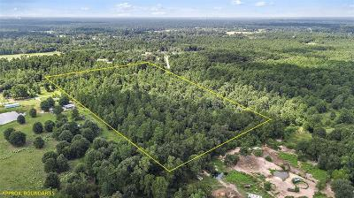 Conroe Farm & Ranch For Sale: 0000 Coon Massey