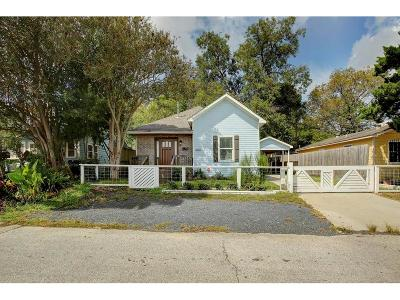 Houston Single Family Home For Sale: 409 Vincent Street