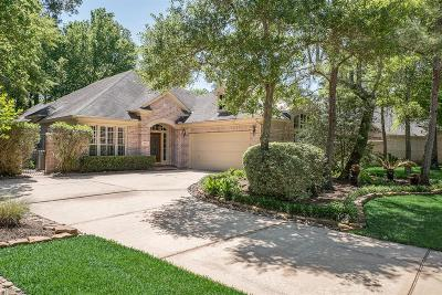 The Woodlands Single Family Home For Sale: 94 Castlegreen Circle