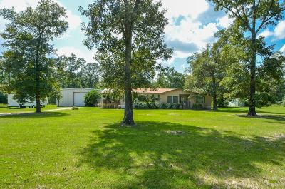 Conroe Farm & Ranch For Sale: 16185 E Williams Road