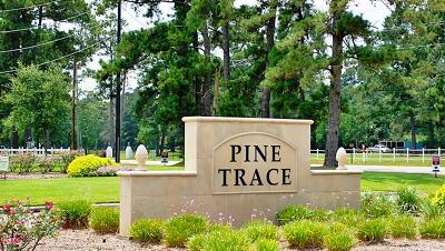 Tomball Single Family Home For Sale: 10130 Pine Trace Village