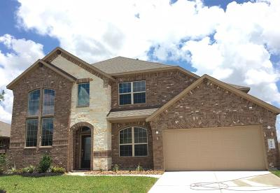 Katy Single Family Home For Sale: 4806 Tuscany Farm Drive