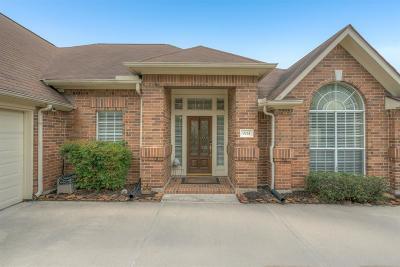 Houston Single Family Home For Sale: 9714 Caritas Circle
