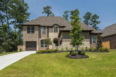 Tomball Single Family Home For Sale: 1012 Brickhaven Falls Lane