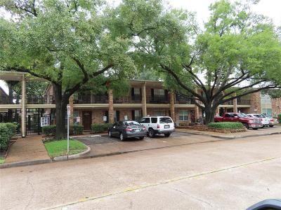 Houston Condo/Townhouse For Sale: 3224 Timmons Lane #155