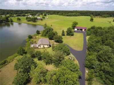 Tomball Farm & Ranch For Sale: 21645 Mueschke Road